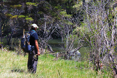 Fly Fishing at Sheep's Crossing (image)