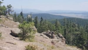East Baldy trail lookout over pine trees